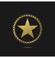 Golden star logo vector image