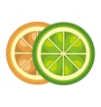 Fruit healthy food isolated icon vector image
