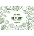 horizontal doodle handdrawn fruits and vector image