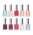Colorful Nail Polish Bottle Set vector image