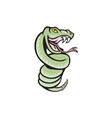 Rattle Snake Coiling Up Cartoon vector image vector image
