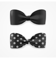 Black Bow Tie Set vector image