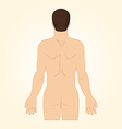European man standing back naked View up to hips vector image