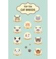 pastel top ten cat breeds poster vector image