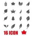 grey leaf icon set vector image