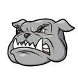 Aggressive bulldog 3 vector image