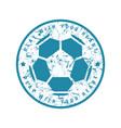 round emblem of soccer championship vector image