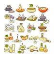 colorful spa accessory icon vector image