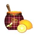 sewing lemon and honey vector image