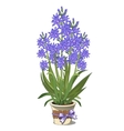 Bouquet of blue lilies in glass vase vector image