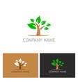 plant tree logo vector image