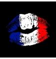 Flag lipstick on grunge lips vector image