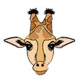 giraffe african animal wildlife image vector image