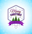 Typographic label for winter holidays vector image