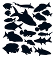 different kinds of fishes silhouettes vector image