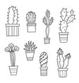 lovely cartoon cacti and plants in pots vector image vector image