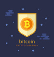 bitcoin concept cryptocurrency logo sigh vector image