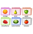 Word cards for fruits and vegetables vector image