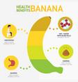 health benefits of banana infographics vector image vector image