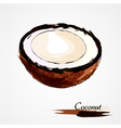 coconut part portion vector image
