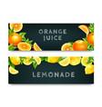 orange juice lemonade 2 banners set vector image