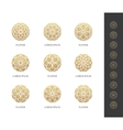 Golden round flower logo set vector image vector image