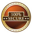 Hundred Percent Secure vector image