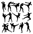 Thai Boxing Sport Activity Silhouettes vector image