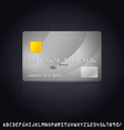 Silver Credit Card Icon vector image vector image