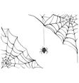 Spiderweb Big black spider web Black scary vector image