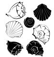 silhouette of sea shells vector image