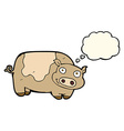 cartoon pig with thought bubble vector image