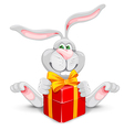 Rabbit and gift vector image vector image