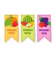 Fruits and vegetables bright badges vector image vector image