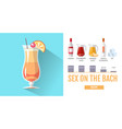 flat style cocktail sex on the beach menu vector image