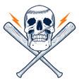 baseball skull vector image