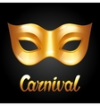 Carnival invitation card with golden mask vector image