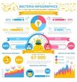 Bacteria infographics set vector image vector image