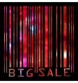 big sale bar codes vector image vector image