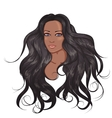 Face African American woman with long hair vector image
