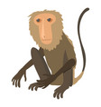 sitting monkey icon cartoon style vector image