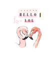 flamingo couple in love vector image