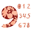 decorative numbers vector image