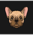 head of pug dog face of pet animal hand drawn vector image
