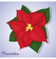Red poinsettia flower Christmas Star Simple vector image
