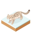 Isometric Snow Leopard vector image