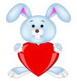Rabbit with red heart vector image