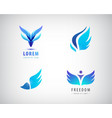 set of blue wings logos vector image