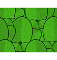 Spinach texture Fresh green ornament Green lettuce vector image