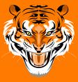 Sumatran Tiger vector image